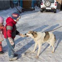 дети с собакой :: Елена Исхакова