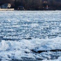Морозное утро :: Виталий Павлов