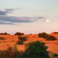 Караньское плато на закате в полнолуние. :: Mihail Mihaylov