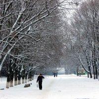 Падал пушистый снег. :: Валентина ツ ღ✿ღ