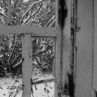 Заметает зима, заметает... :: Константин Строев