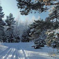 Снега...Снега...Мещёрские просёлки... :: Лесо-Вед (Баранов)