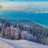 Зима на фоне моря. :: Фёдор. Лашков