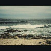 Тихий океан у берегов Калифорнии :: Андрей Крючков