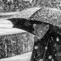 Снег идет... :: Алексей Видов