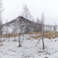 На просторах Тульской области :: Ирина Шарапова