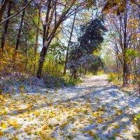 первый снег :: юрий иванов