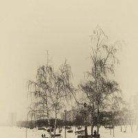 Зимние наброски :: Екатерррина Полунина