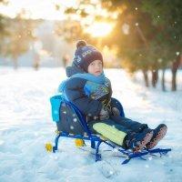 Новогодние каникулы :: наталья Дубовая