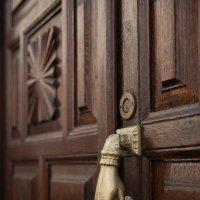 """""""Звонок"""" в дверь :: Bogdan Snegureac"""
