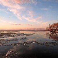 В апреле на Плещеевом озере :: елена