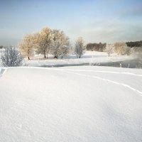 морозное утро №4 :: Владимир Носов