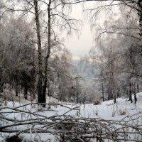В горах зимой... :: MaOla ***