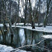 Зима бывает разной... :: Александр Бойко