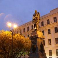 Памятник Пахтусову :: Ольга