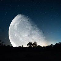 Луна :: Александр Криулин