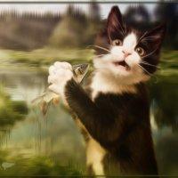 Кот-рыбак :: Amedeya Ay