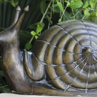 Фотография, построенная по принципу спирали Фибоначчи :: Анна Исенева