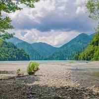 Озеро Рица :: Наталья Золотарева
