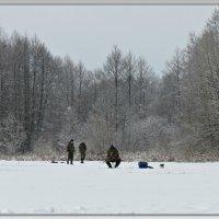 Рыбаки :: Михаил Цегалко