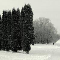 Район Арбеково. Пенза :: Ильгам Кильдеев
