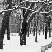 Белым снегом всё покрыло: и деревья и дома. :: Валентина ツ ღ✿ღ