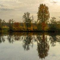 Autumn landscape :: Vladislav Gushin