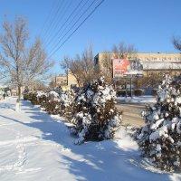 Снег в городе :: Юрий Гайворонский