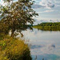 Река Молома :: Илья Остроградский