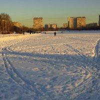 Любимый пруд зимой :: Андрей Лукьянов