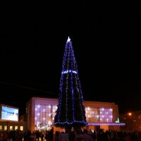 Праздник открытия новогодней ёлки :: Ольга