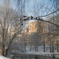 Зимний пригород 10 :: Виталий