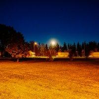 Ночь, осень и автотрасса :: Genych