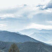 Синие горы Алтая :: Вадим Фогель