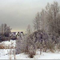 Хмурый зимний день :: Вячеслав Минаев