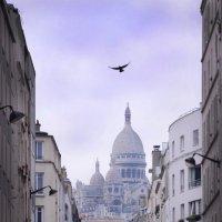 На улицах Монмартра,Париж :: Наталия