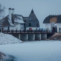 Серые зимние дни :: Artem Zelenyuk