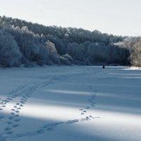 С утра сидят на озере... :: Лесо-Вед (Баранов)