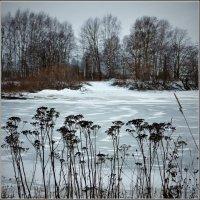 В оковах льда :: Валерий Талашов