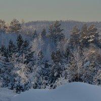 Оттенки зимы :: Татьяна Соловьева