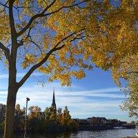 Осень в Франкфурте :: Александр Бойко