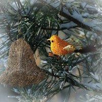 В ожидании Рождества :: Swetlana V