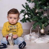 Мальчик сидит под ёлкой :: Valentina Zaytseva