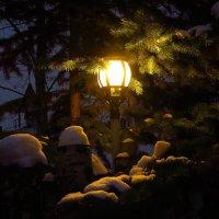 Вечернее настроение :: Андрей Лукьянов