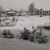 Зима :: Svetlana Lyaxovich