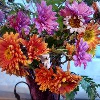 Декабрьские хризантемы :: Нина Корешкова