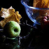 Осенние  яблоки. :: Валерия  Полещикова