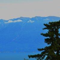 Синева  гор :: Николай Танаев