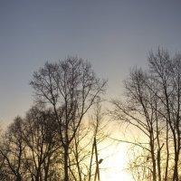 Закат :: Люда Удалых