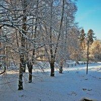 Мороз и солнце... :: Натали Пам